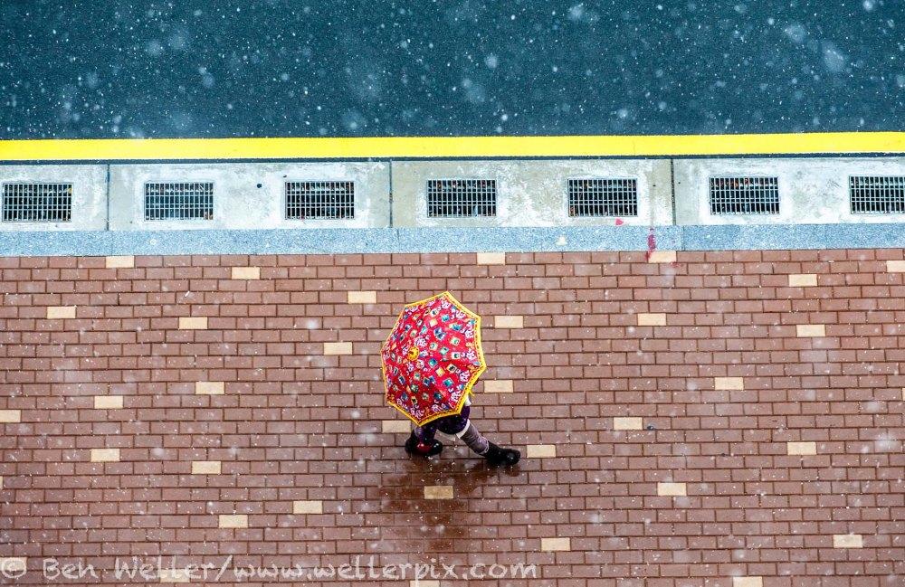 A pedestrian shields herself from falling snow in Busan, South Korea, January 8, 2014. ©Ben Weller/www.wellerpix.com