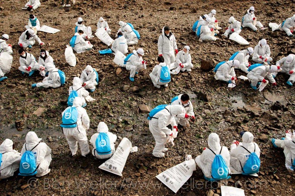 yeosu, oil spill, shindeok, gs caltex, korea, korean oil spill
