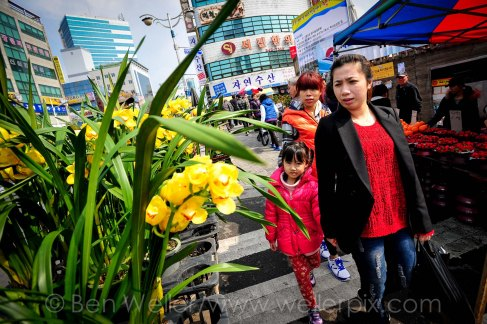 Shoppers look at flowers for sale at Gupo Market, a traditional market in Busan, South Korea.